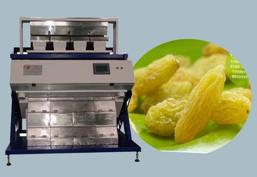 Anhui Raisin Color Sorter from manufactur provide with good after-sales service