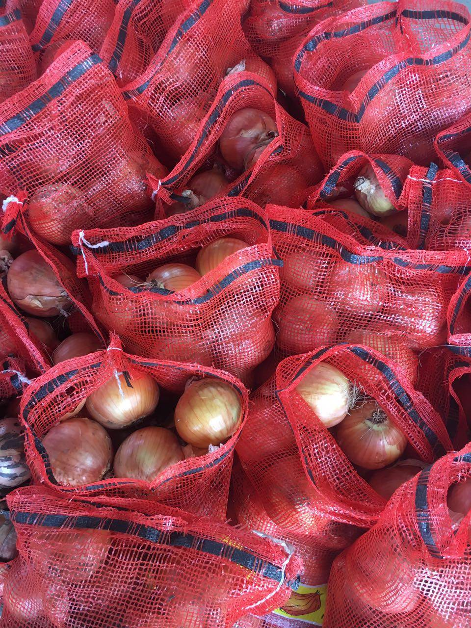 Fresh onion vegetables in China