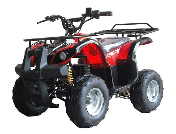 ELECTRIC ATV,ATV,ELECTRIC QUAD BIKE