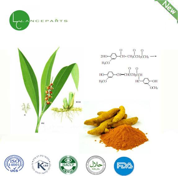 lanceparts supply 100% pure natural plant extract Curcuma Extract