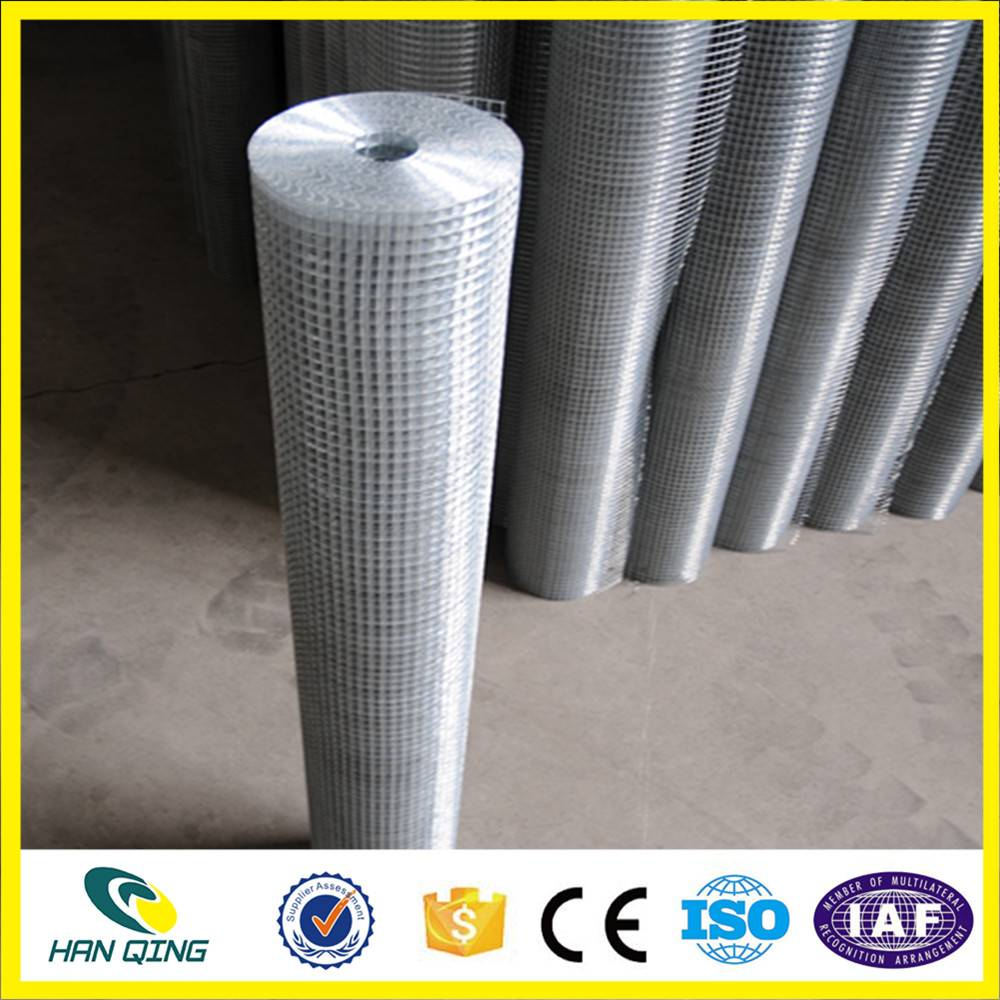 1 inch X1 inch galvanized welded wire mesh