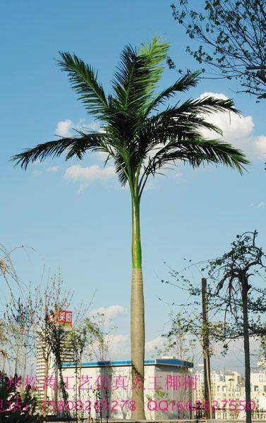 Beach Decoration Artificial Plant Palm Tree