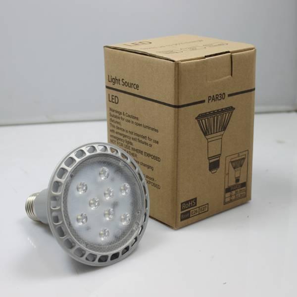 14W Par30 Spot Light