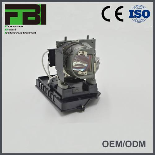 NP19LP Projector lamp with housing