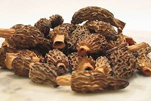 Dried Morel Mushroom (Morchella conica )