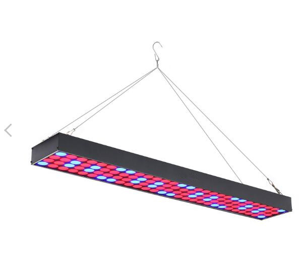 60w rectangle red and blue spectrum led grow light for hobby and hydroponics