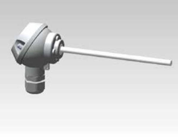 Form J thermocouple(TM2401)