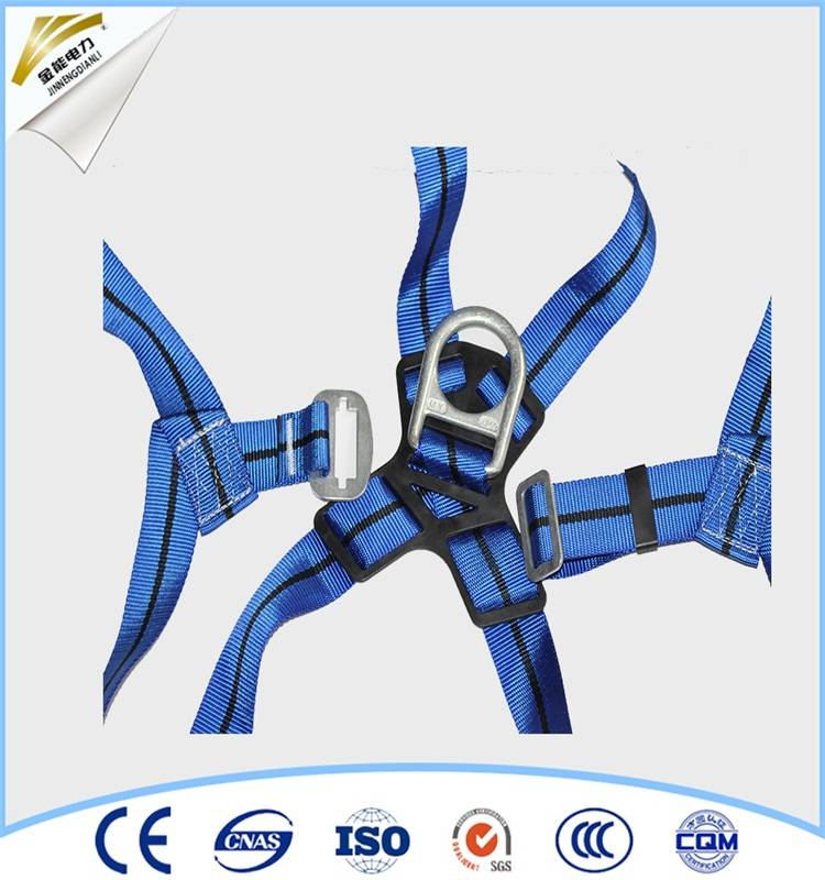 safety belt harness for electrical