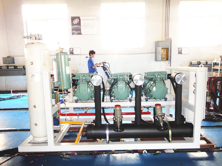 Bitzer Piston parallel compression condensing units