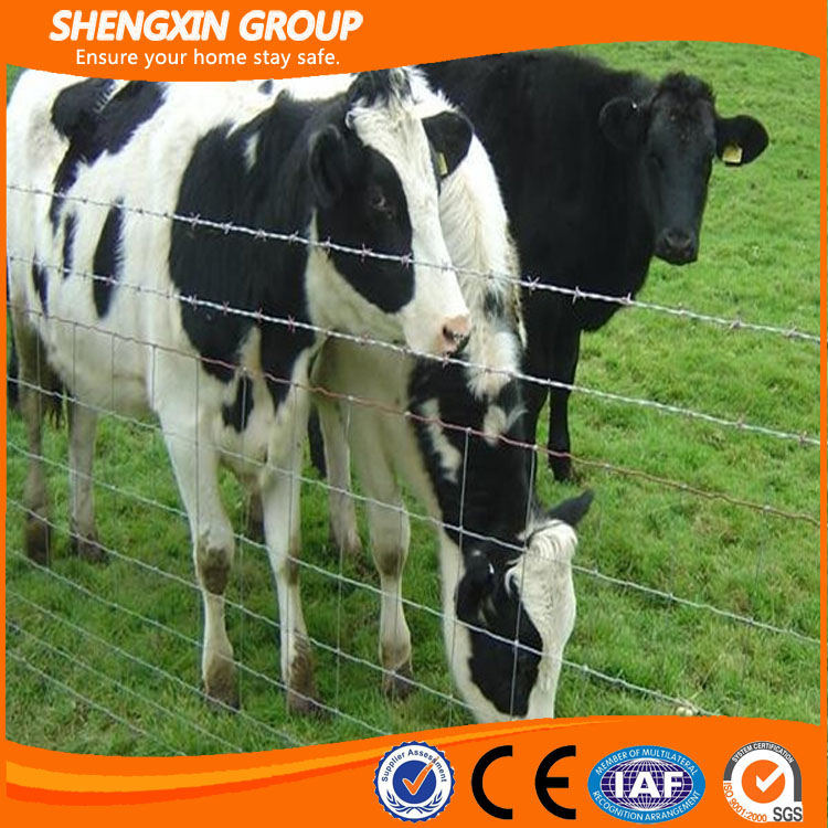 factory direct sale high quality hot sale cow fence