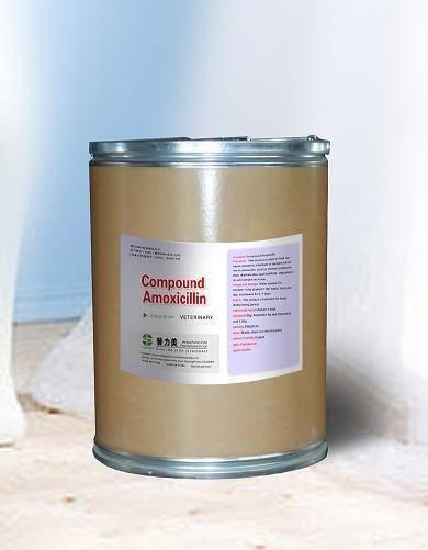 Compound Amoxicillin