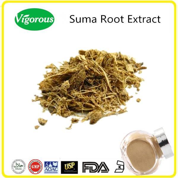 10%20%Pfaffoside 10:1 Pfaffia paniculata extract/Pfaffia paniculata powder/suma root extract