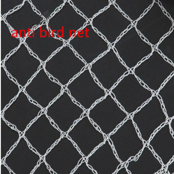 High Quality Agricultural Bird Protection Netting