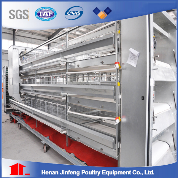 chicken layer cage and poultry equipment supplier manufacturer