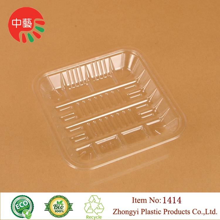 clear disposable plastic fruit food tray