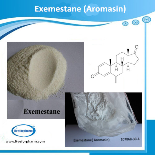 ANTI-ESTROGEN Aromasin Powder Exemestane CAS 107868-30-4 98.8% above