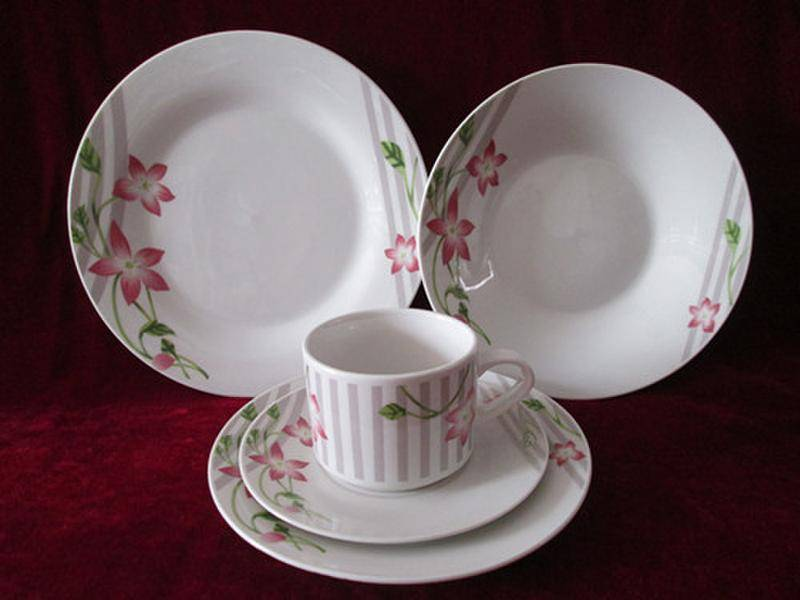 Porcelain Dinner sets with decal