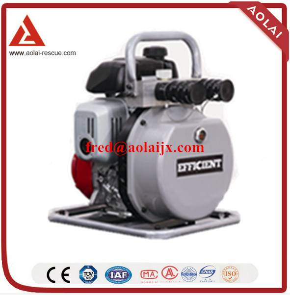 Double Output Motor Pump