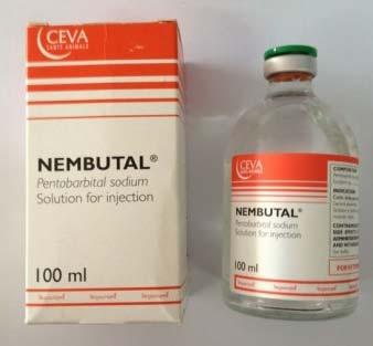00Pentobarbital Nembutal Sodium