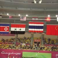 Automatic flag-raising system