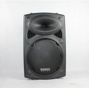 Professiona Active outdoor Stage Speaker