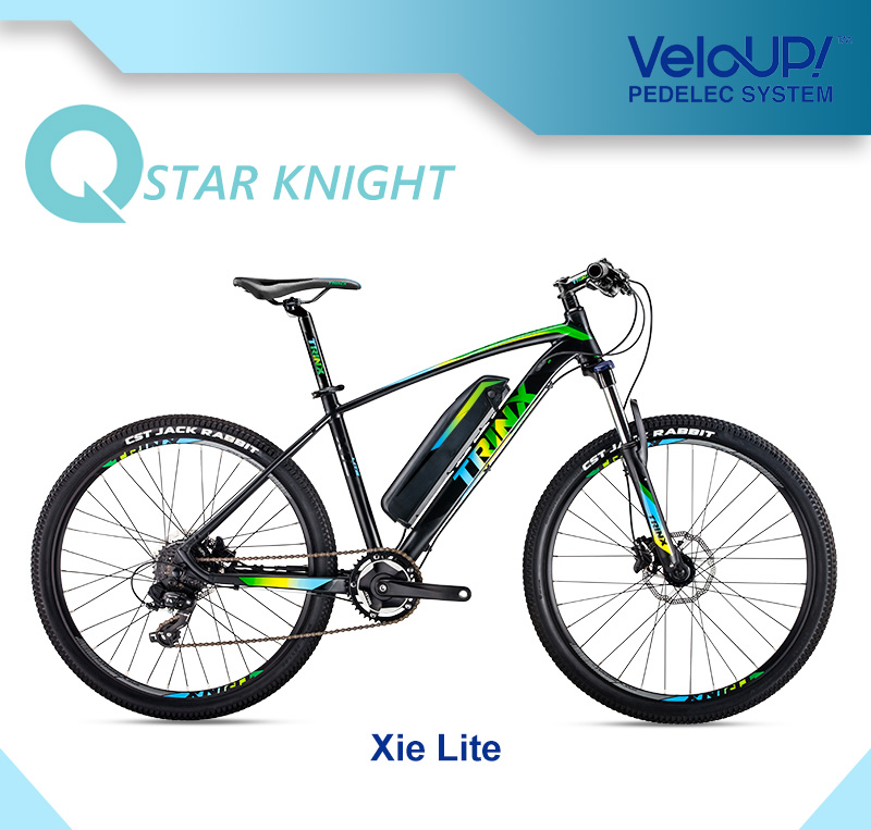 26 Inch 36V 250W Mountain Electric Bike