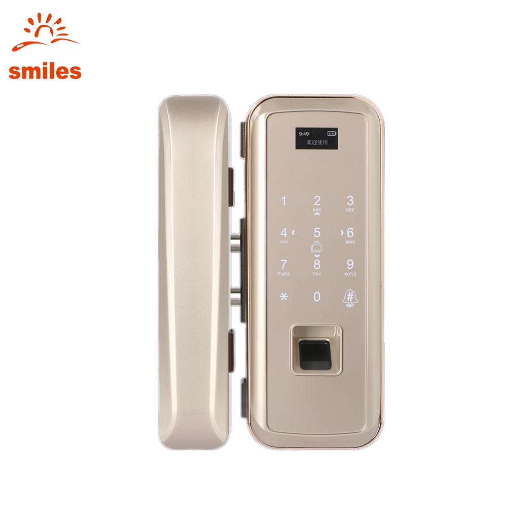 Keyless Fingerprint Keypad Door Lock Support Codes/Remote ControL/RFID Card For Glass Door