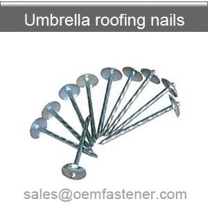 Galvanized roofing nail 9G 2.5""