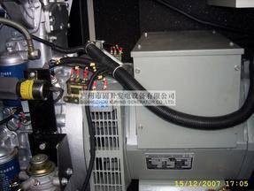 Diesel Generator Genset Lovol PK30800 with Schneider Switch