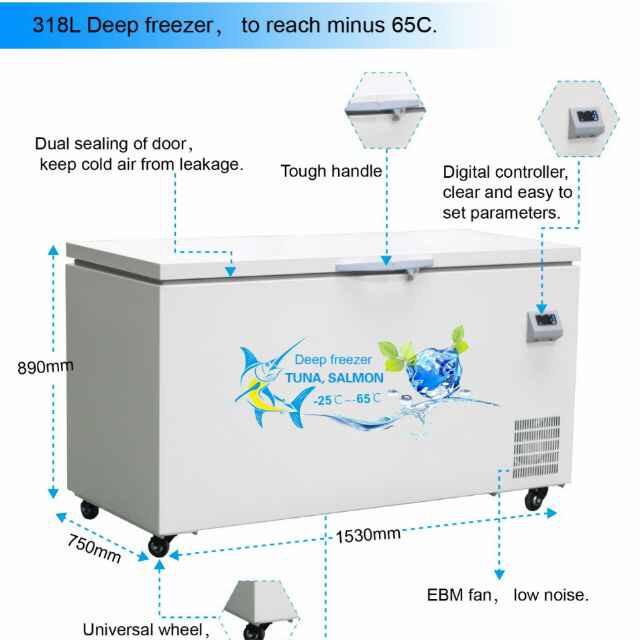 Heli ultra low temperature deep freezer tuna freezer