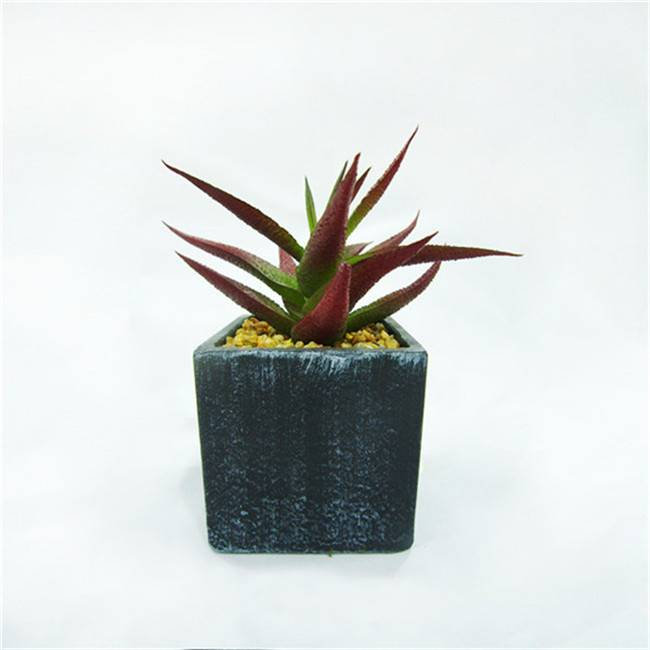 Popular Grey Artificial Concrete Potted Plant Echeveria Office Desk Succulent Plant for Sale