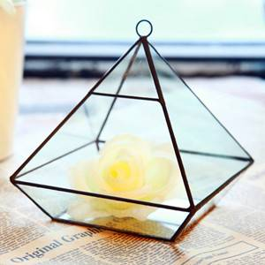 Creative DIY Succulent Plant Geometry Transparent House Glass Flower Pot B08