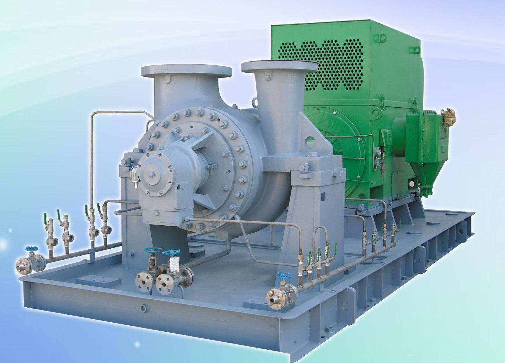 Heavy Duty Petrochemical Process Pump (API 610 BB2)