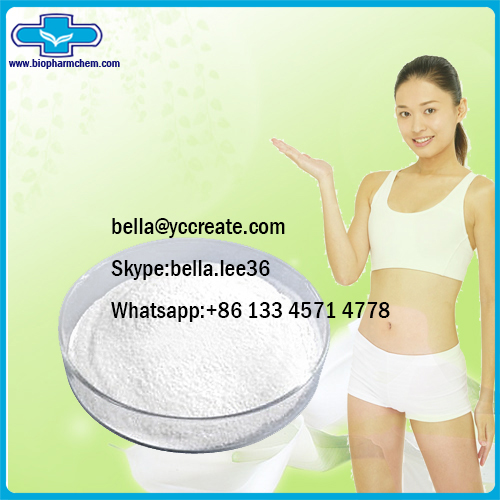 Healthy Drugs Theobromine for Body Shape