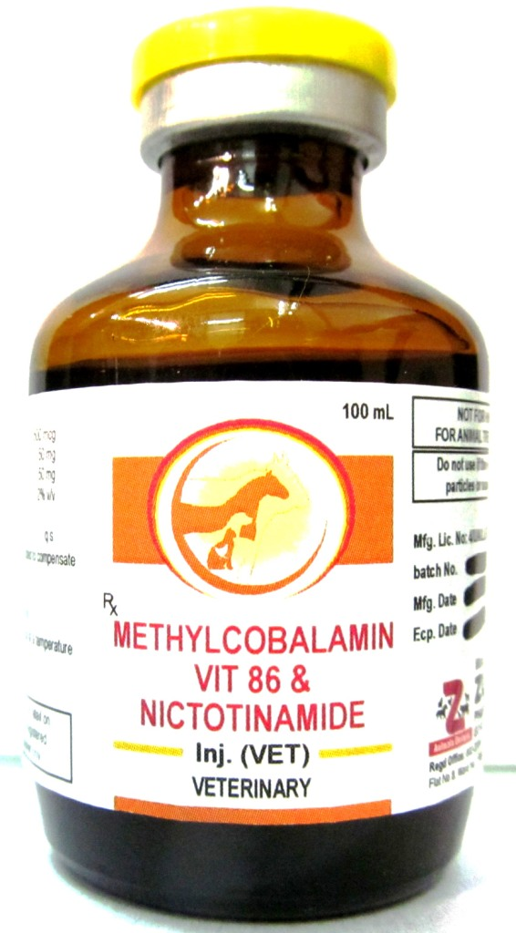 Veterinary Methylcobalamin with Vitamin B6 & Nicotinamide Injection