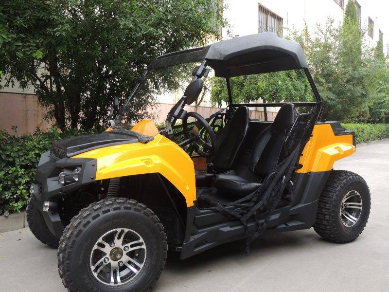 Teenager and Adults 200cc youth UTV Factory