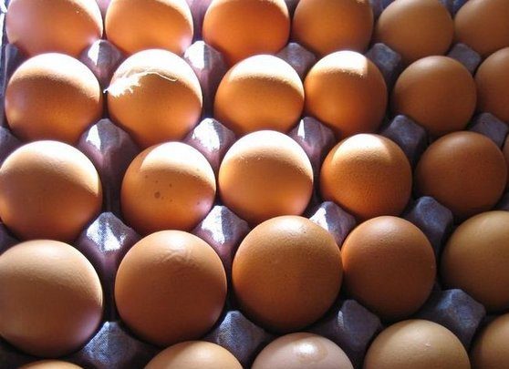 Eggs,Fresh Table Chicken Eggs, Chicken Hatching Eggs, Brown and White Eggs