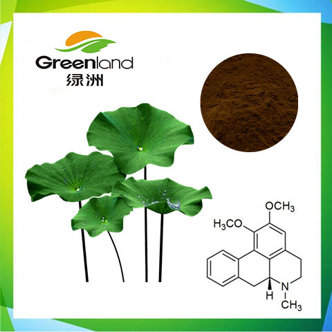 China Factory Sell Lotus Leaf Extract 2%-98% Nuciferine