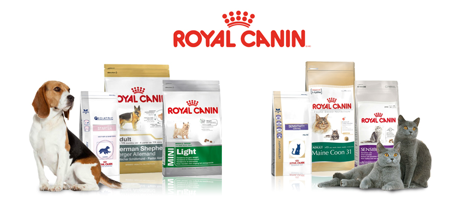 ROYAL CANIN PET FOOD, ORIJEN CAT FOOD, HILL PET FOOD, ACANA PET FOOD, PURINA PET FOOD