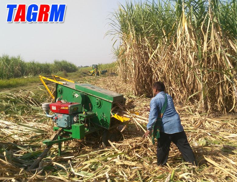 New design 6BCT-5 sgarcane leaf peeler, sugarcane leaf removing, sugarcane peeling machine