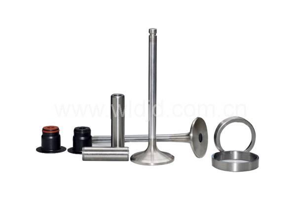 SDEC Parts Intake /Exhaust Valve Assy