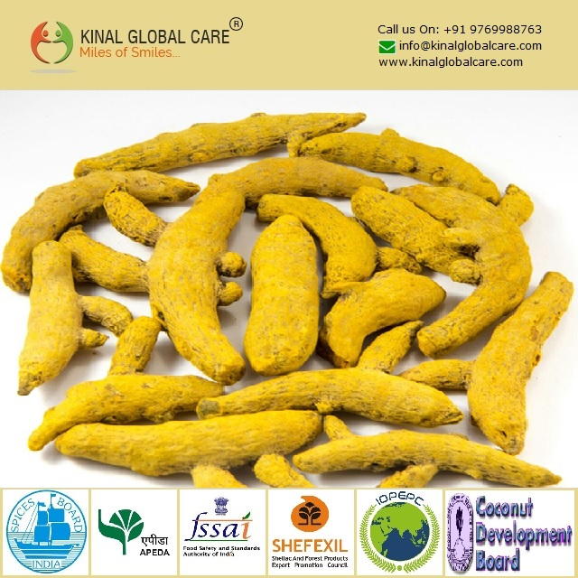 Best Grade Indian Turmeric Finger