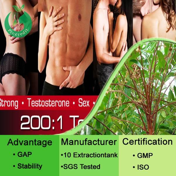 Tongkat ali root Extract Tongkat Ali extract powder Tongkat Ali extract 200:1  100:1