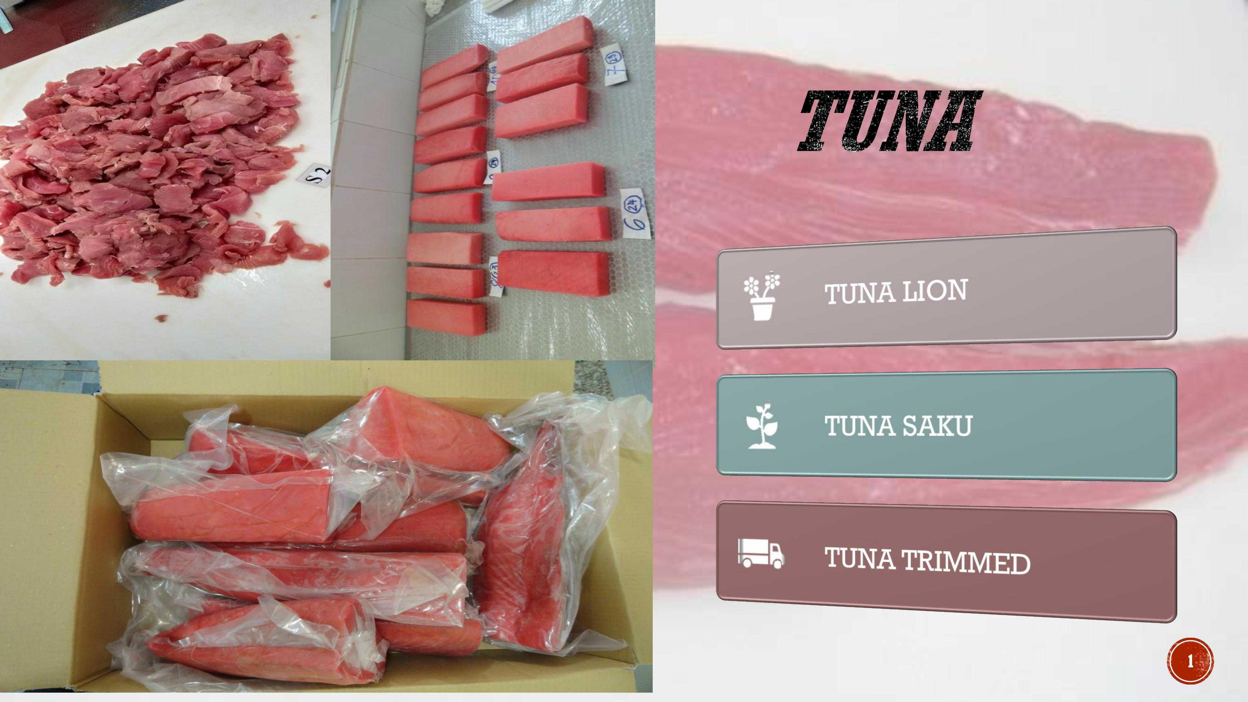 TUNA LION - SAKU - STEAK -BASEAFOOD II