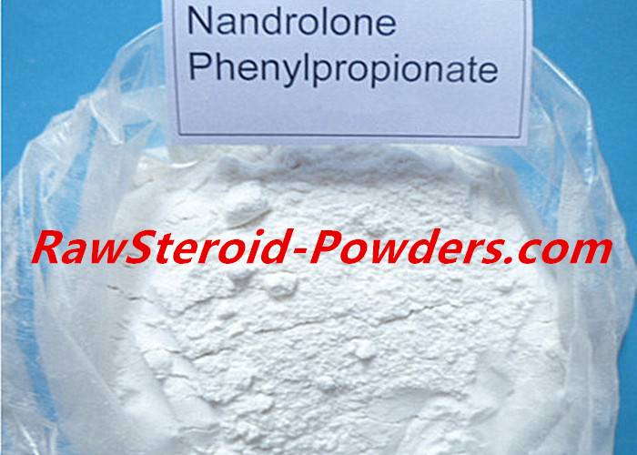 High Purity White Powder Nandrolone Steroid Phenylpropionate With Good Effect 62-90-8