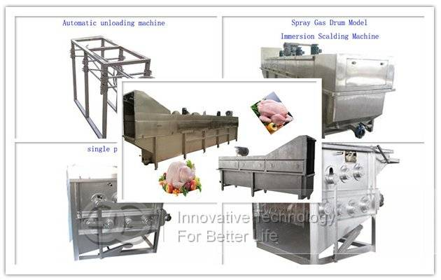 Chicken|Poultry Slaughtering Machine Line