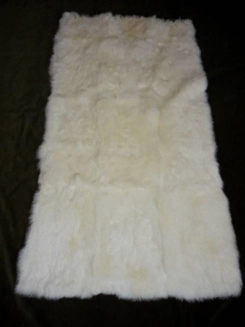 White color long hair rabbit plates