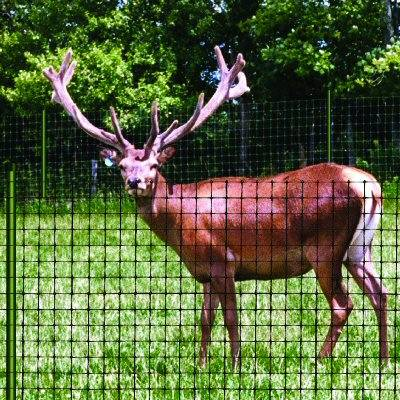 China supply deer barrier fence /deer barrier net