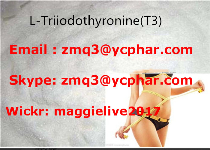 Natural Weight Loss Powder T3 Hormones L-Triiodothyronine For burning fat CAS 55-06-1