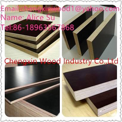 Construction Film Faced Plywood/ Marine Plywood(poplar,combi,birch core)